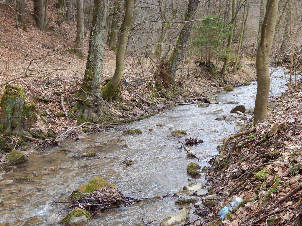 Potok Vlárka
