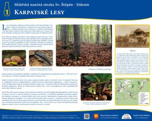 1. Karpatské lesy